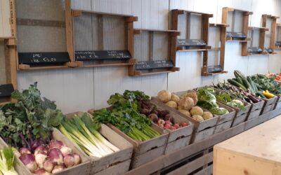 21 september openen we onze eigen boerderijwinkel!