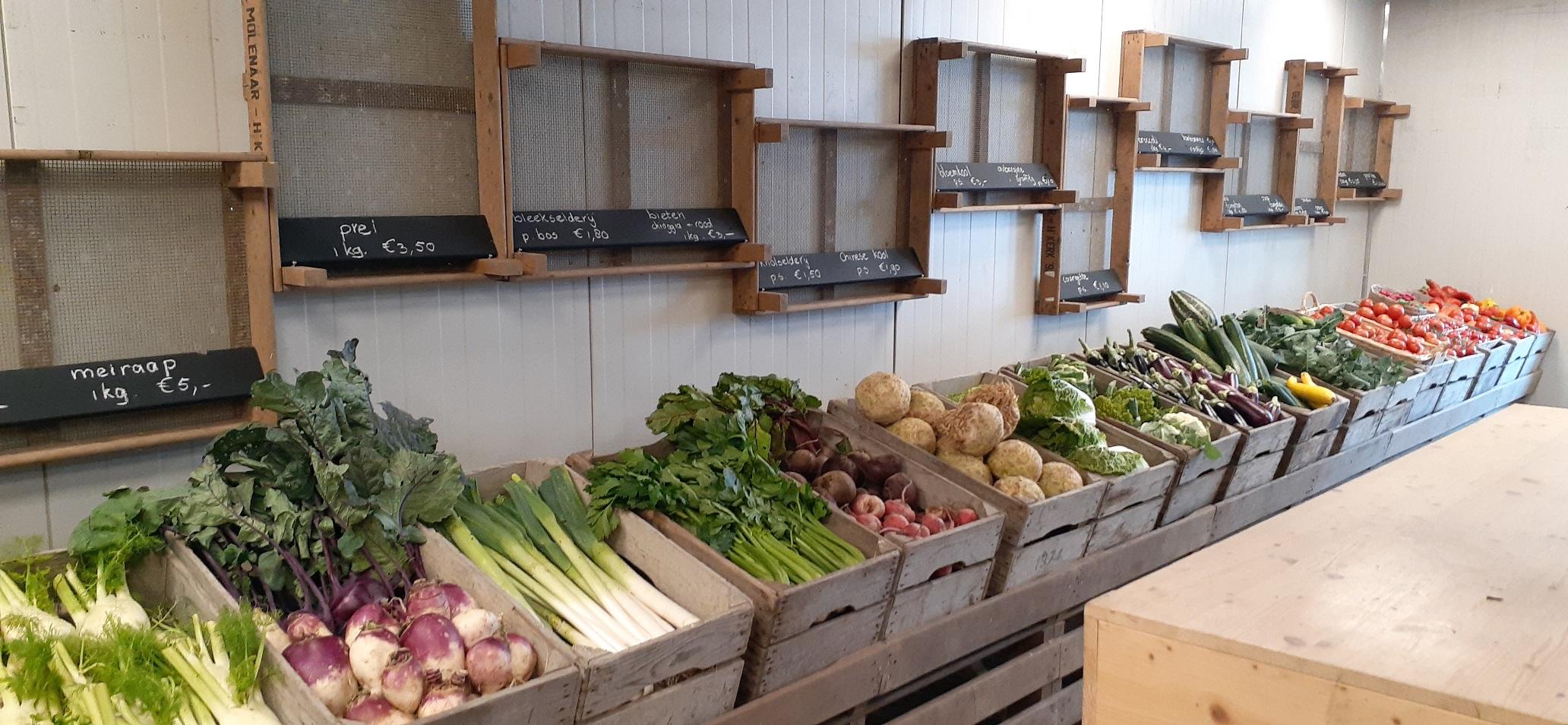 Biologische groendte in display